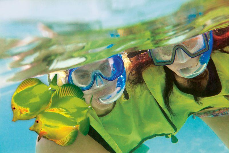 Norwegian Cruise Line scuba diving shore excursion