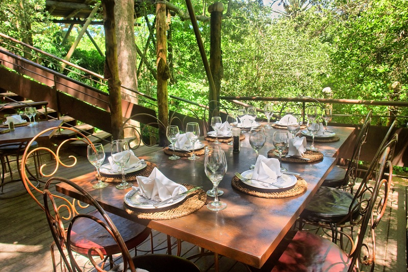 Dining Table Under Trees, Stellenbosch, Cape Town