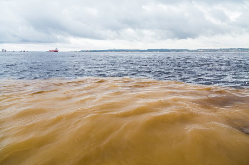 Meeting of Waters in Manaus, Brazil