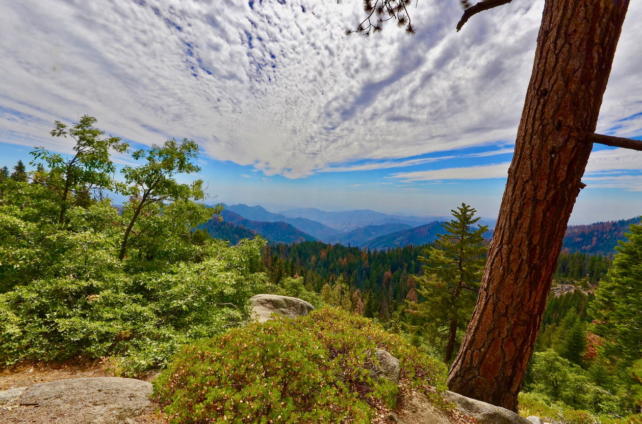 Kings Canyon Outlook, Yosemite National park