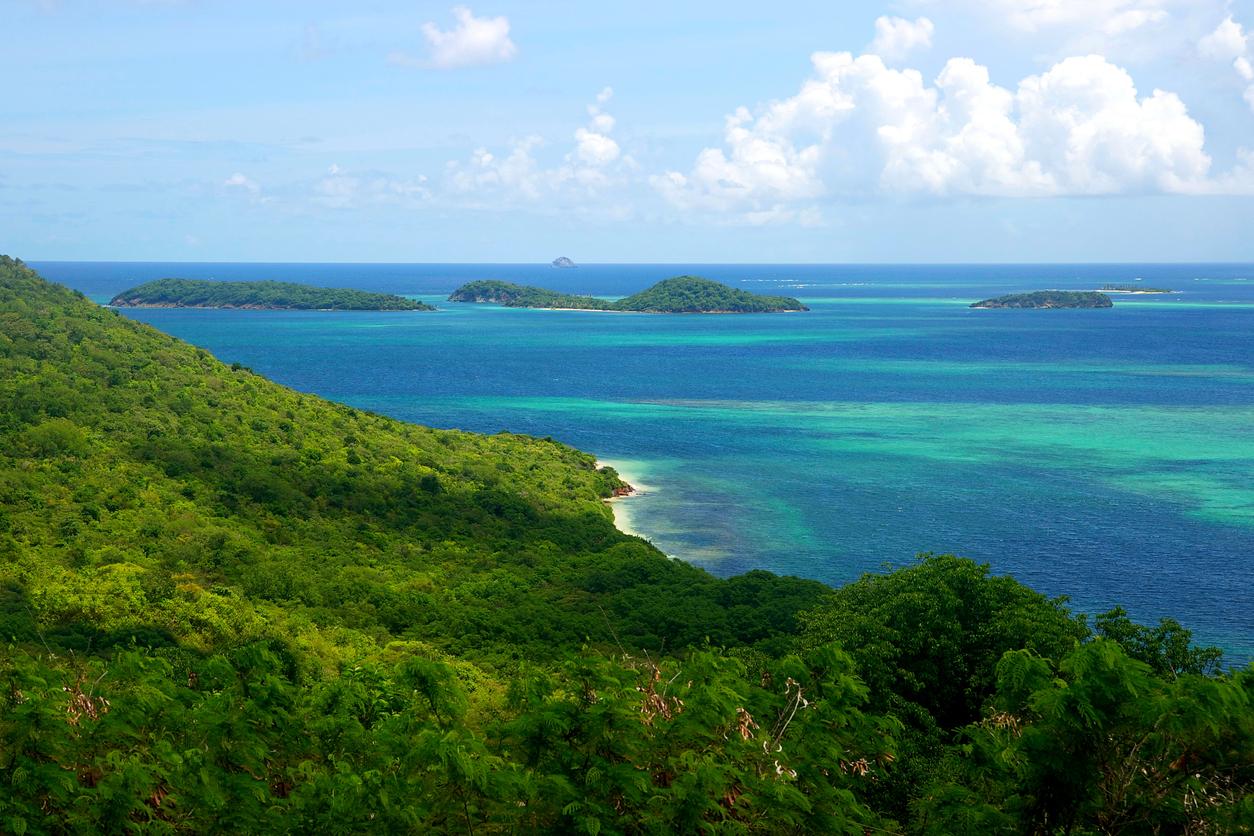 The Grenadines Islands Caribbean Island Chain Tobago Cays Saint Vincent