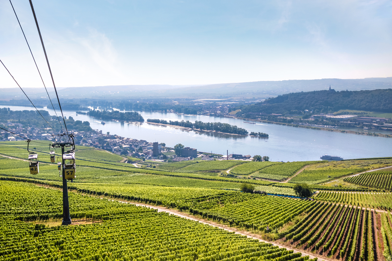View on Ruedesheim in the Rheingau, Hesse, Germany